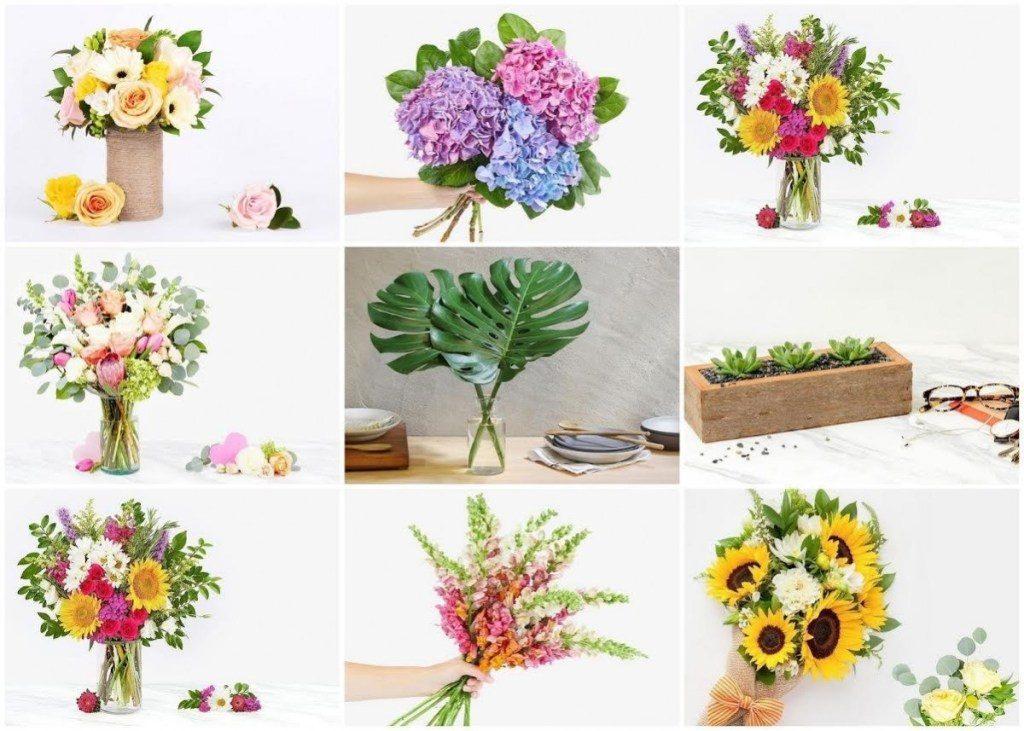 florist_2